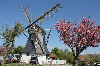 Erdholländer Mühle