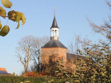 Blick durch Sträucher auf den Kirchturm