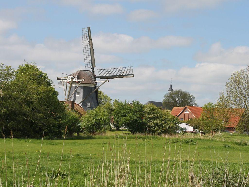 Blick über grüne Felder auf die Werdumer Mühle