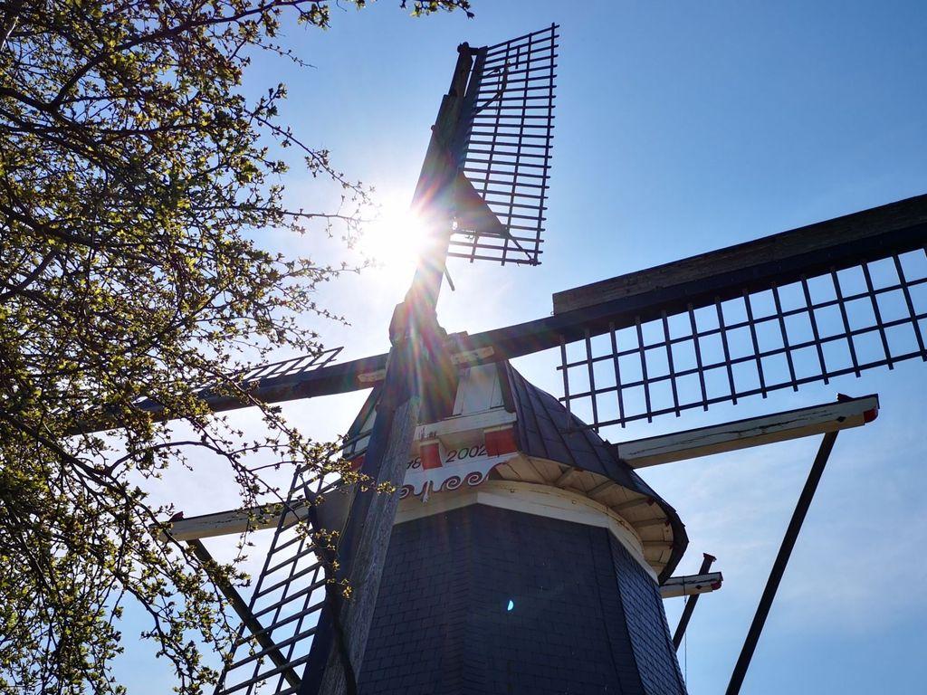 Die Sonne blitzt hinter den Mühlenflügeln hervor