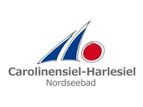 Das Logo hat zwei blaue Segel und einen großen roten Punkt