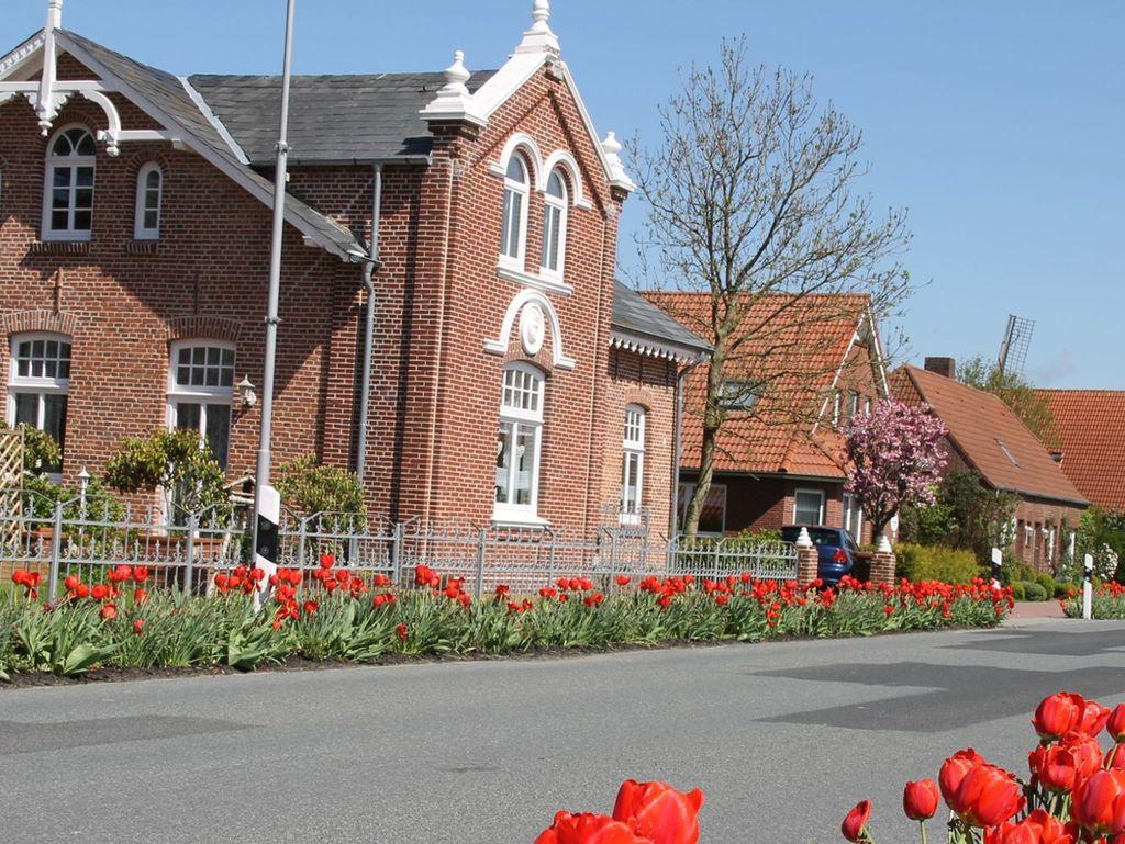 Rote Tulpen an der Edenserloogerstraße