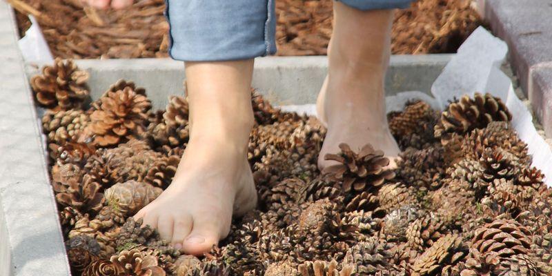 Füße die auf Tannenzapfen stehen