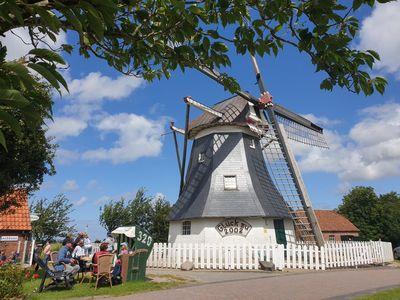 Blick auf die Werdumer Mühle