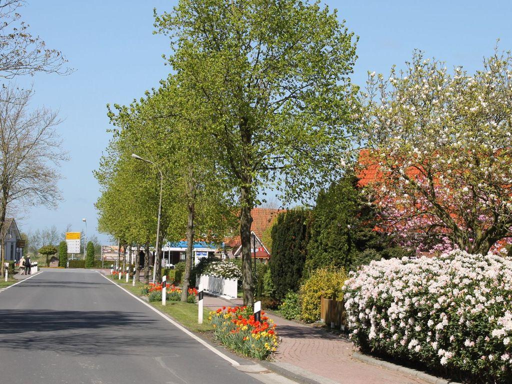 Blick auf die blühenden Bäume und Sträucher an der Buttforderstraße im Frühling