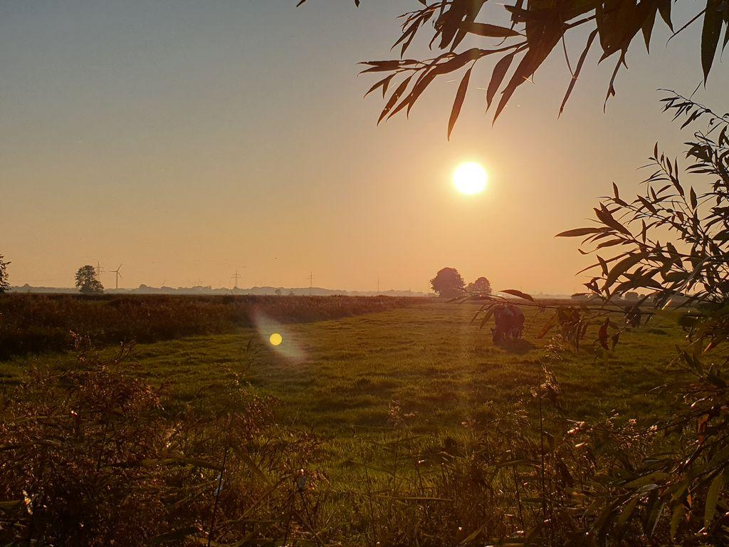 Sonnenuntergang mit Blick auf Wiesen und Felder