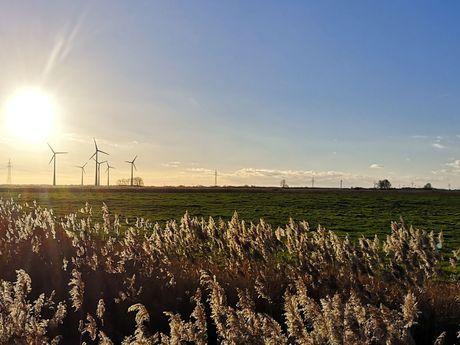 Sonnenuntergang mit Blick über die weiten Felder rund um Werdum